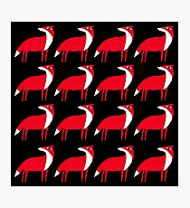 Fox pattern Photographic Print