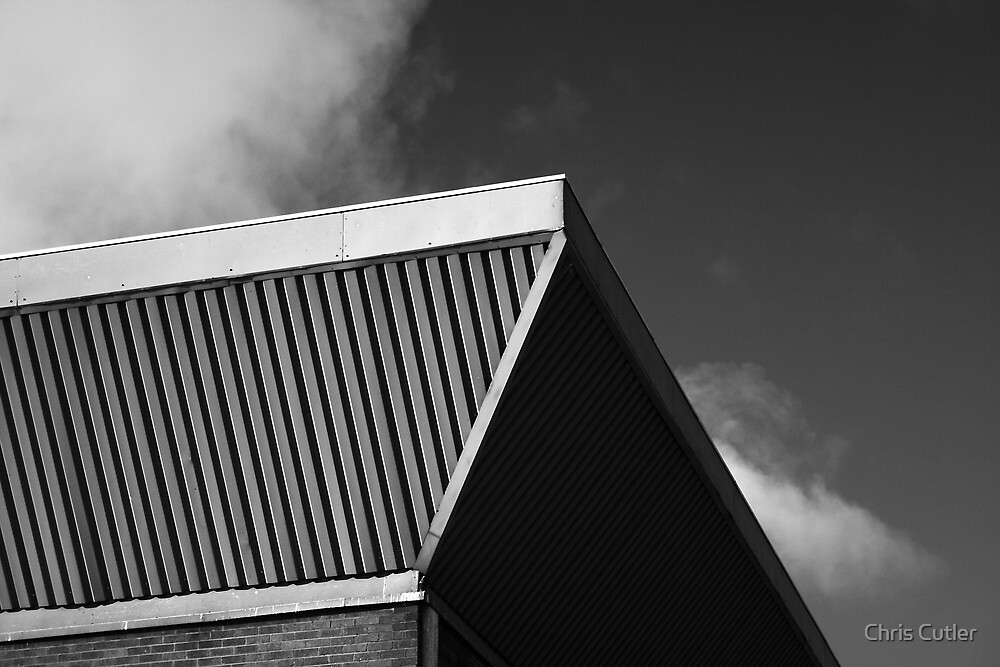 Monochrome Roof by Chris Cutler