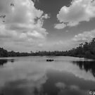Gator Pond  by John  Kapusta