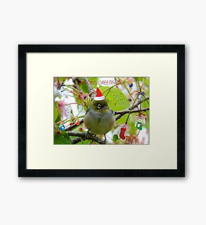 Where Is The Christmas Party? - Silver-eye! - NZ  Framed Print