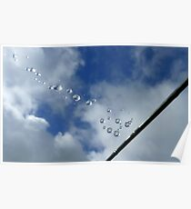 Sparkling Bubbles In The Sky - Raindrops on Web - NZ Poster