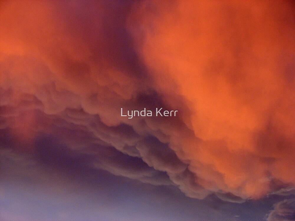 Shepherd's Warning by Lynda Kerr