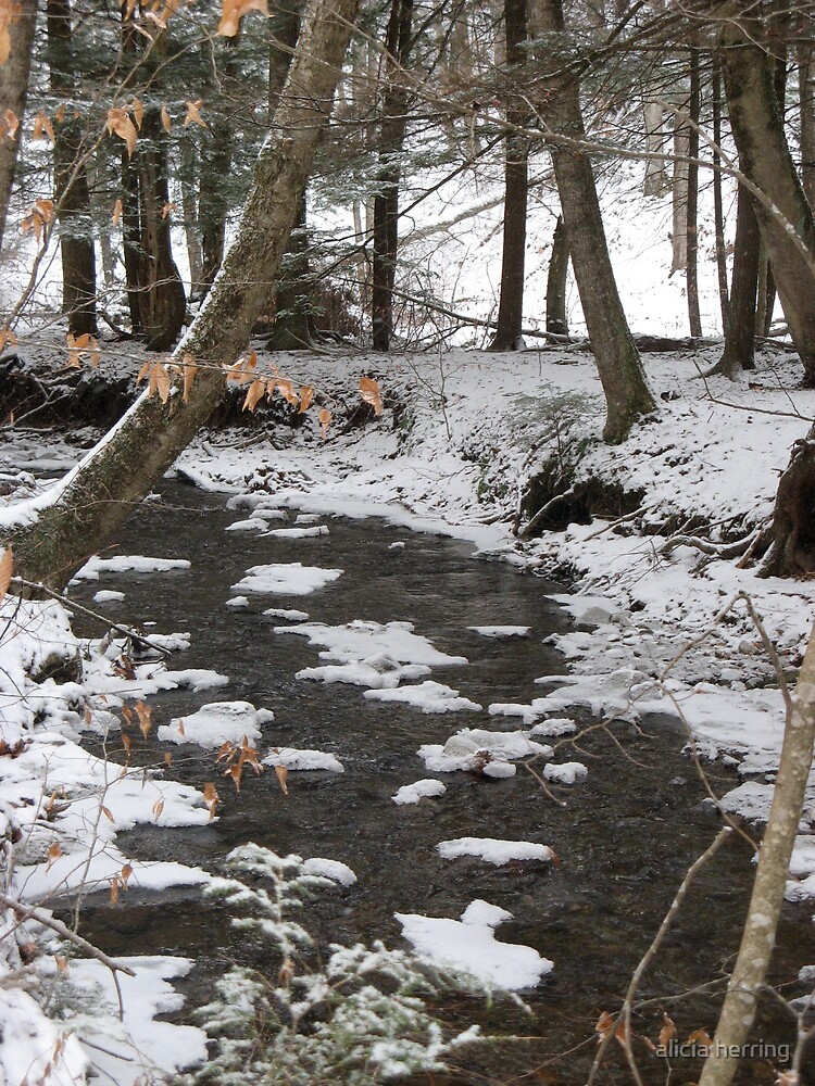 Snowy River by alicia herring