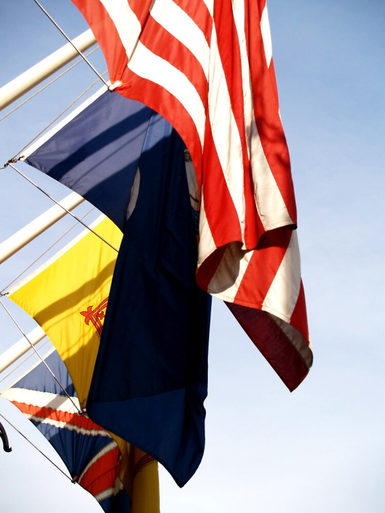 Flags by Sam  Athey