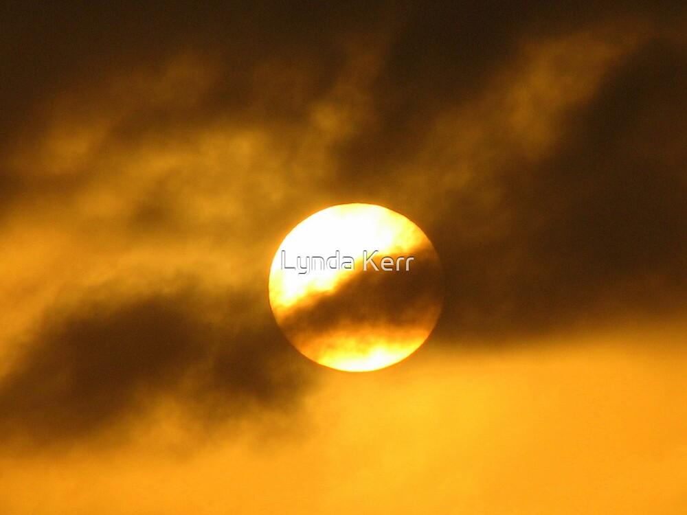 Solar Shroud by Lynda Kerr