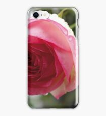 Rose im Regen iPhone Case/Skin