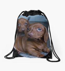 Two Puppies Drawstring Bag