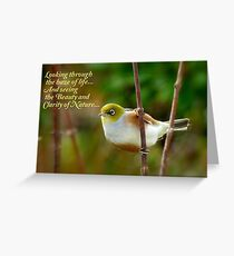 Looking Through The Haze Of Life.... - Silver-Eye - NZ Greeting Card