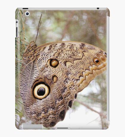 Caligo eurilochus iPad Case/Skin