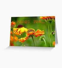 Thank you - Black Eyed Susan - Cone Flower - NZ Greeting Card