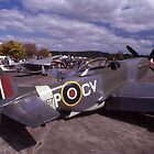 Mustang Alley @ Tyabb Air Show 2004 by muz2142