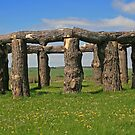 Wood Henge by RedHillDigital