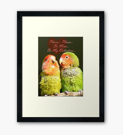 Please.. Please.. Be Mine, Be My Valentine - Love Birds - NZ Framed Print