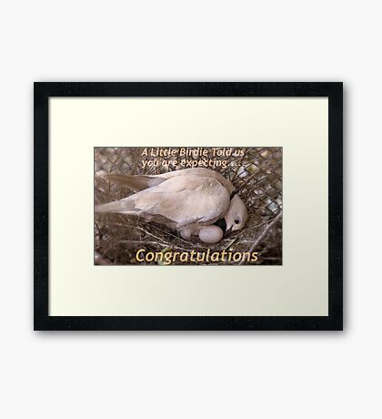 A Little Birdie Told Us You Are Expecting - Congratulations - NZ Framed Print