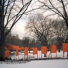 The Gates, Central Park, New York by HelenB