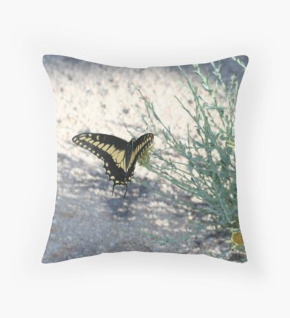 Desert Swallowtail, Mojave Preserve Throw Pillow