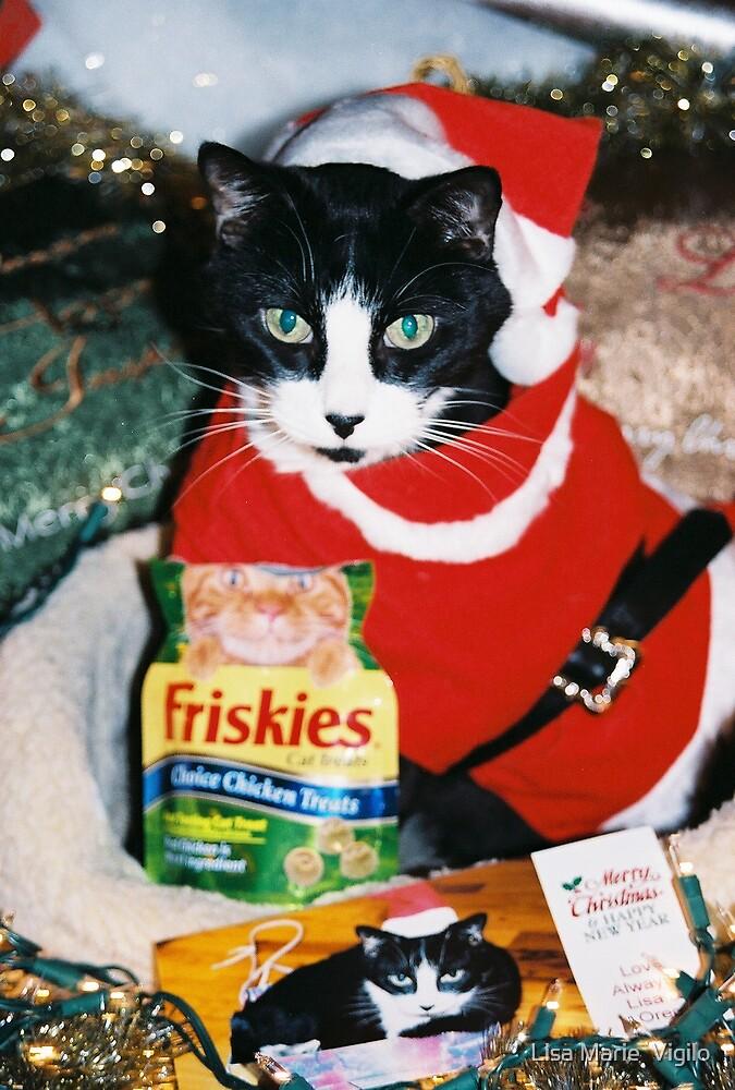 Oreo, Santa Cat with Treats, by Lisa Marie Vigilo by Lisa Marie  Vigilo