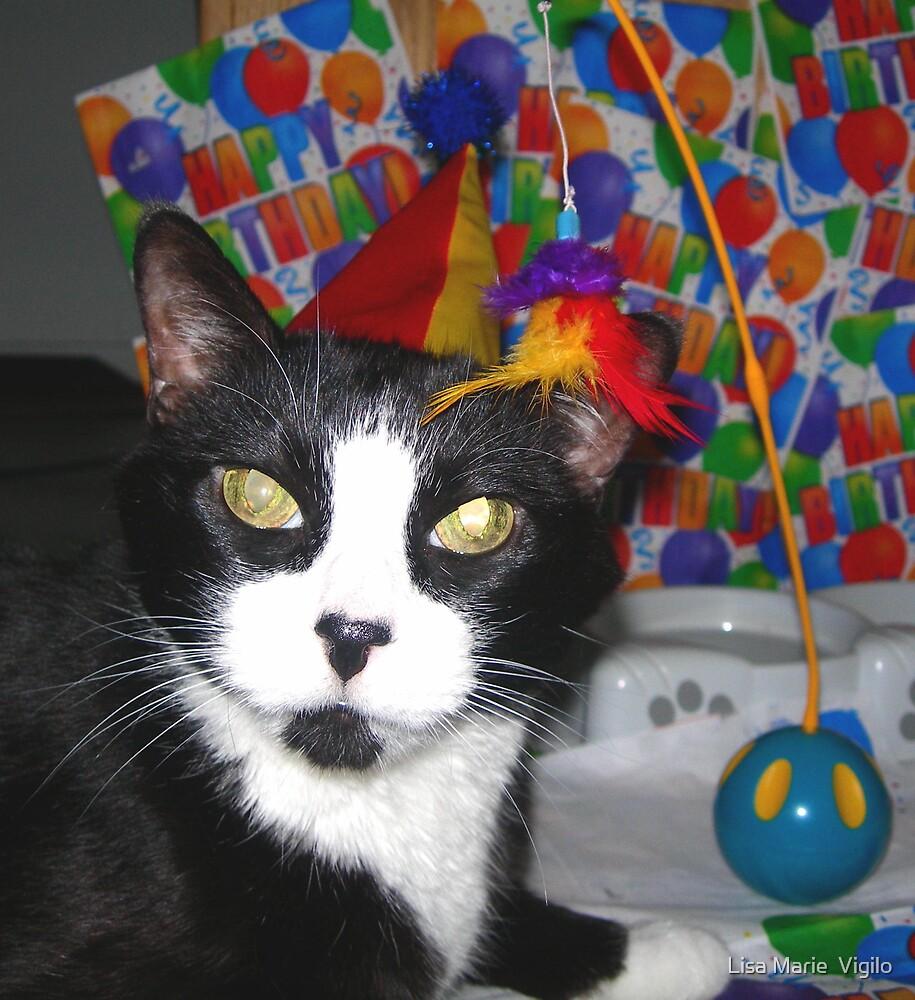 Oreo The Birthday Cat, by Lisa Marie Vigilo by Lisa Marie  Vigilo