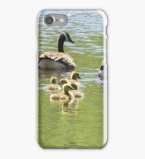 Geese Family iPhone Case/Skin