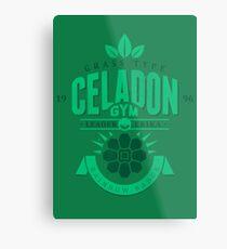 Celadon Gym Metal Print