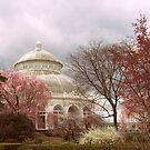 Victorian Garden by Jessica Jenney
