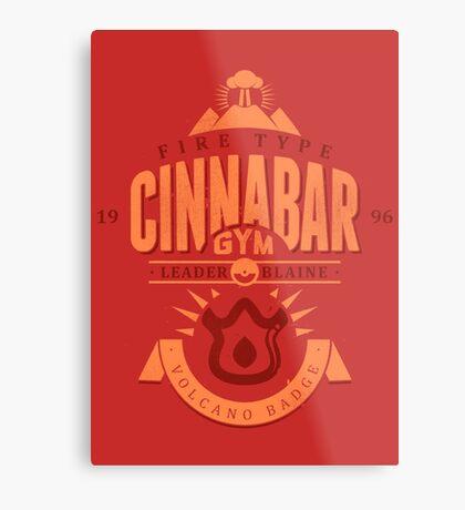 Cinnabar Gym Metal Print