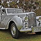 Bentley at Cars Rock by Ferenghi