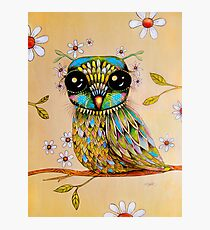the peridot owl Photographic Print