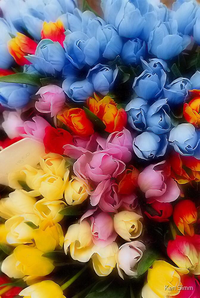 Tulips by Kenart