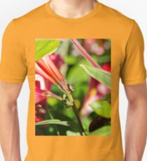 Shield bug explores it's world T-Shirt