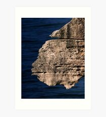 Creatures of the Punakaiki. Art Print