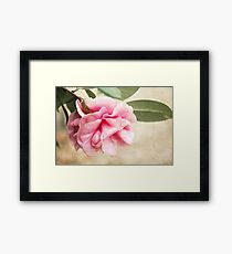 Nature's Touch Framed Print