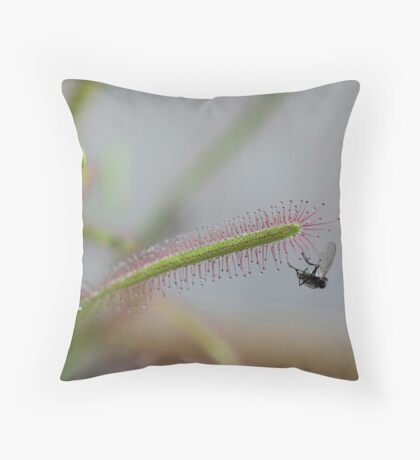 Sundew Throw Pillow