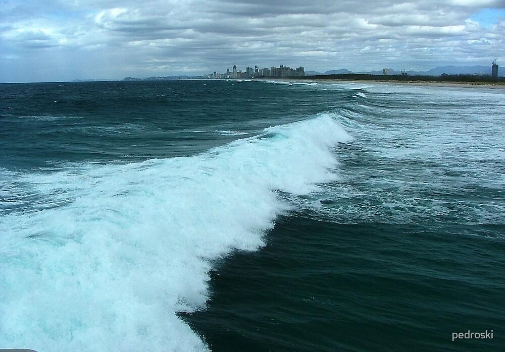 Surfers Paradise & hinterland by pedroski