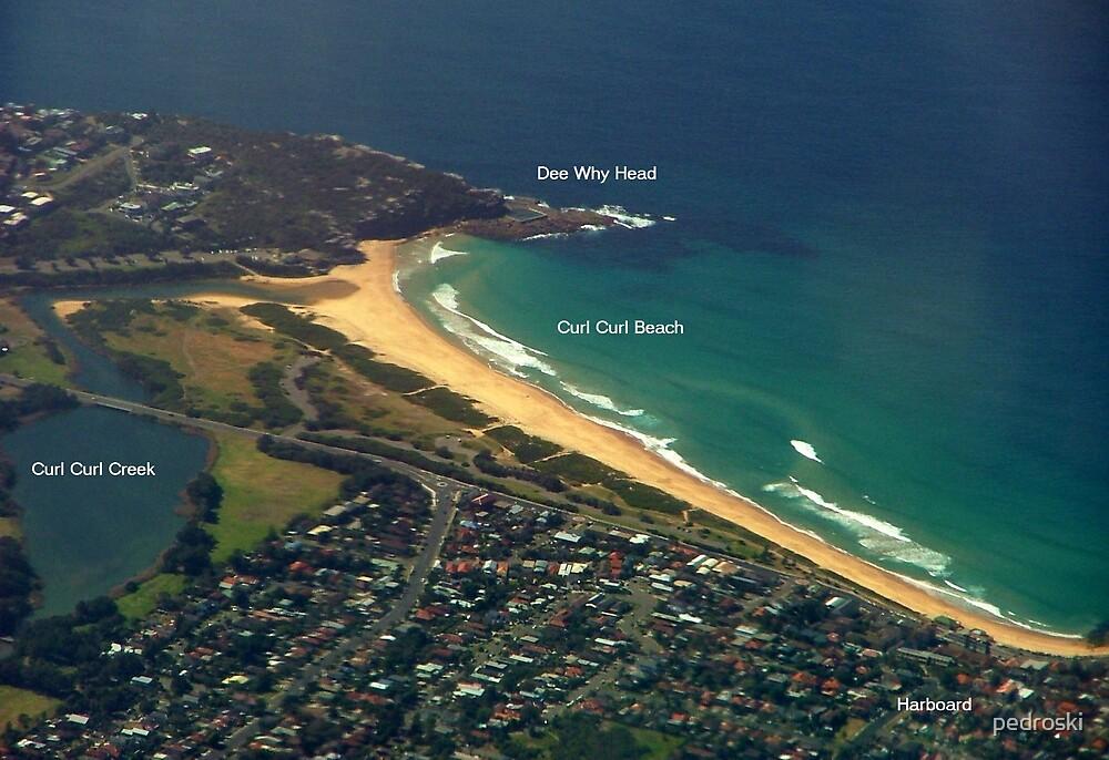 Curl Curl Beach by pedroski