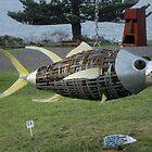 Flying Fish,Sculpture Bermagui,Australia 2017 by muz2142