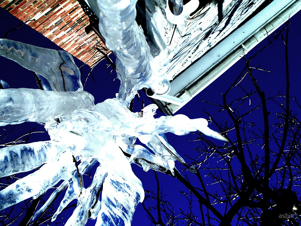 Upside Down Icicles by ashie