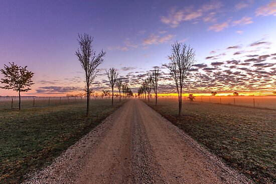 Country dirt road at sunrise by jmimages