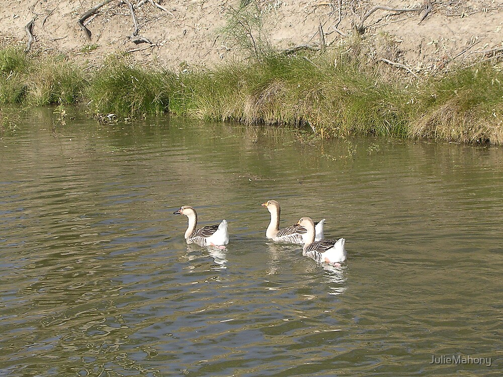 Four Little Geese Went Out One Day... by JulieMahony