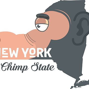 A funny map of New York by funnymaps