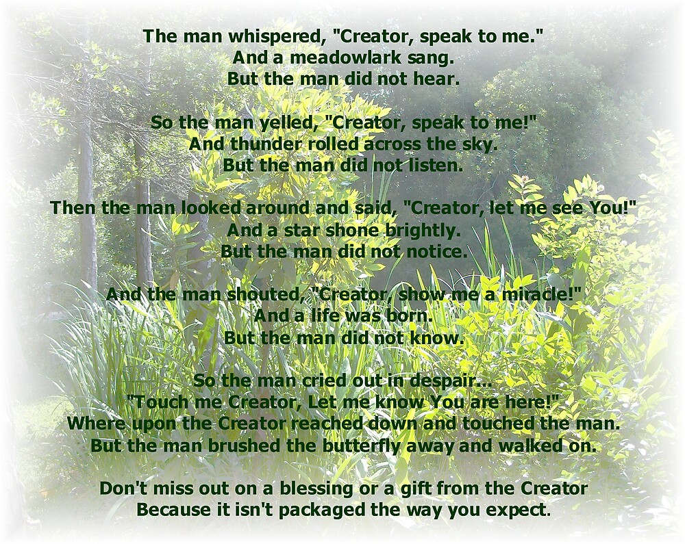 Gift From Creator by Judi Taylor