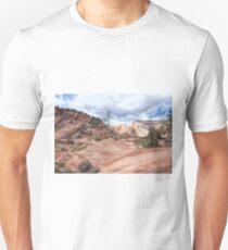 Rock Carvings Unisex T-Shirt