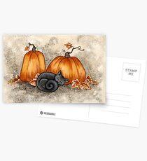 Kürbis-Nickerchen Postkarten