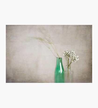 Simplicity In Green Photographic Print