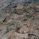Mud by dpearce