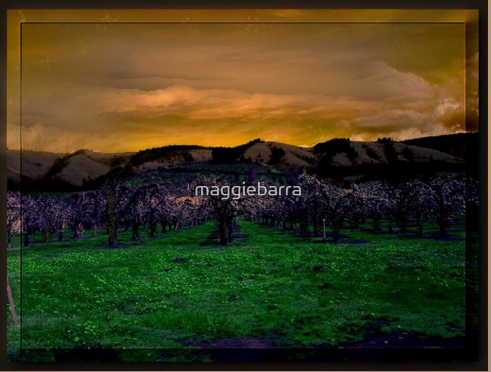 Land of Perpetual Summer by maggiebarra