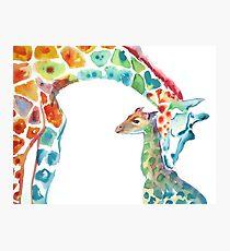 Giraffe Mama und Baby Fotodruck