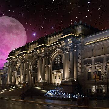 Spacey Metropolitan Museum by FrankieCat