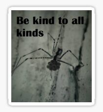 Cellar Spiders Sticker
