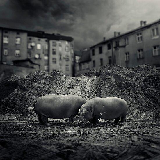 .workers. by Michał Giedrojć